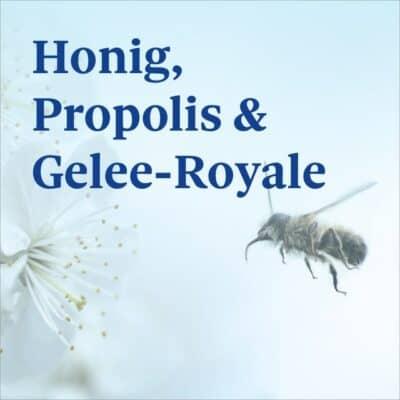 Honig, Propolis & Gelee-Royale