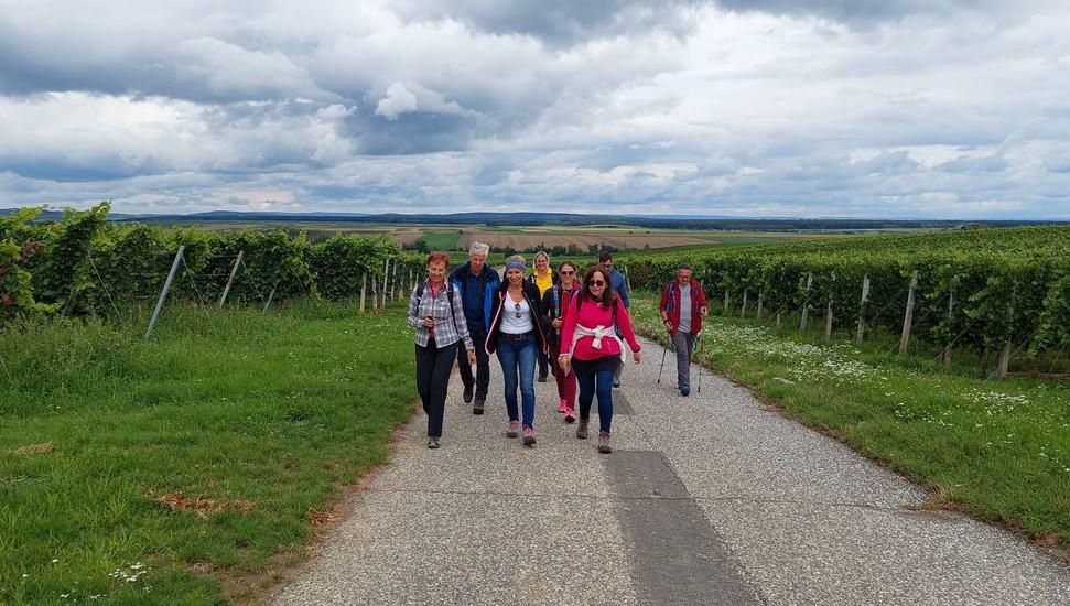 2. Aktionstag – Idyllische Weinwanderung in Deutschkreutz
